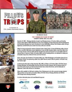 Pillows for Troops